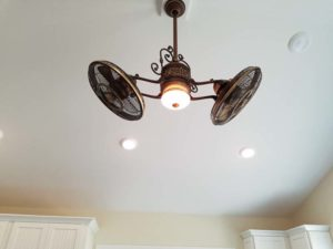 Dark ceiling fans with light